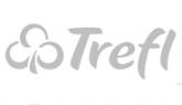 Program lojalnościowy Trefl